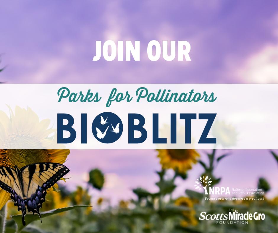 BioBlitz Image